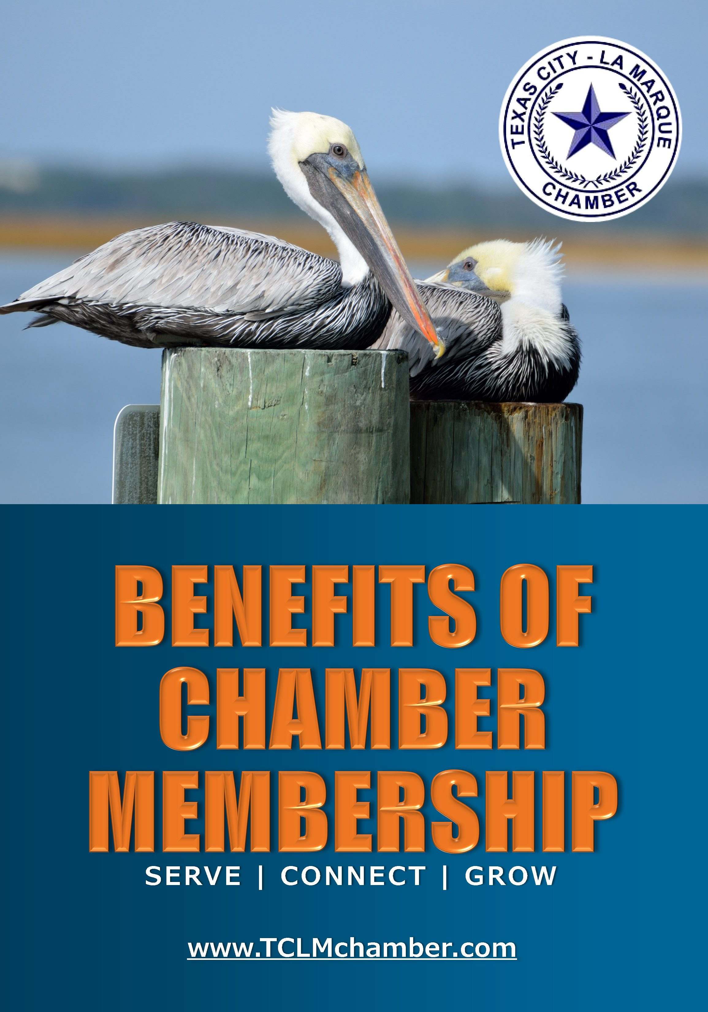 Benefits of Chamber Membership Guide_Page_01
